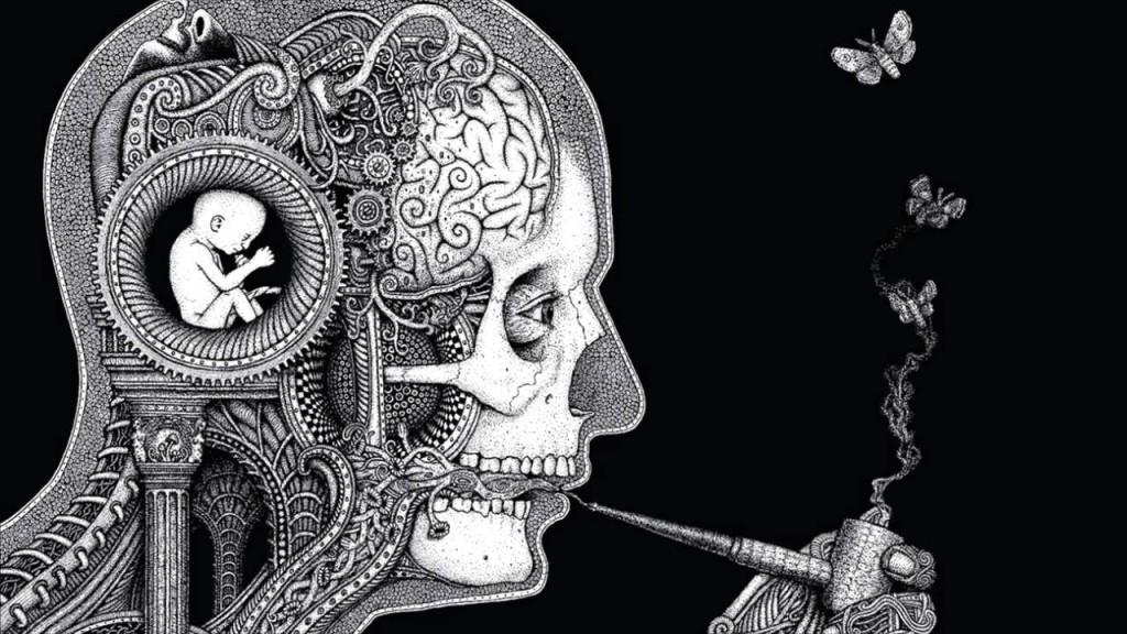 Soen Cognitive